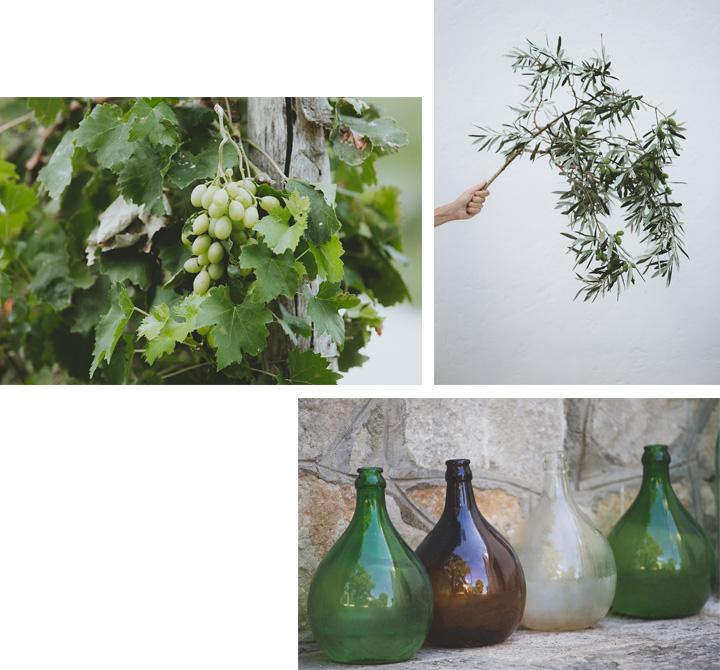 Vino e olio della Masseria Terre di Traiano